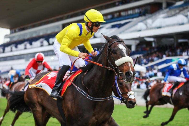 SOUTH AFRICA: Horse whisperer helps Do It Again over the line