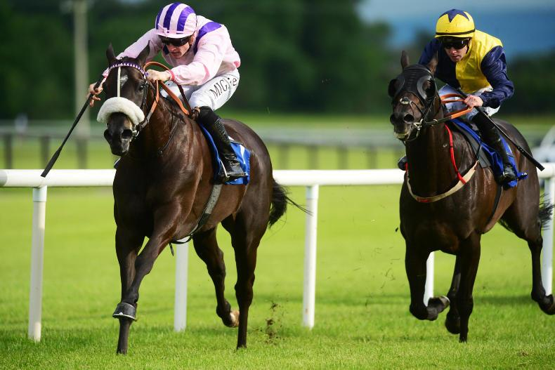 FAIRYHOUSE FRIDAY: Black Magic Woman top of her game