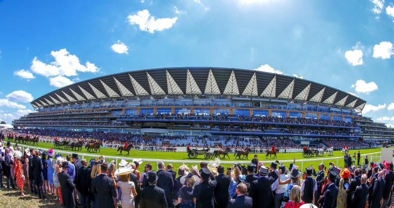 Ascot drying out – but braced for forecast storms