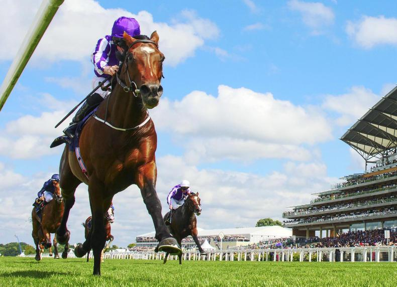 MONDAY OUTLOOK: Five horses to follow at Royal Ascot