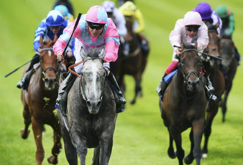 Gosden hoping Darn is Too Hot for Royal Ascot rivals
