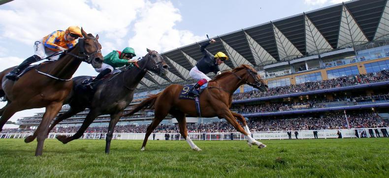 ROYAL ASCOT: Ascot set for royal rumble