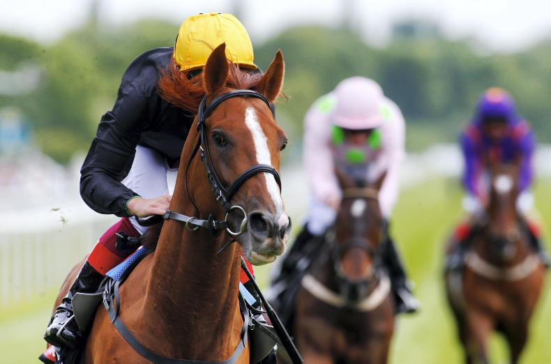 Stradivarius faces 10 in defence of Gold Cup crown