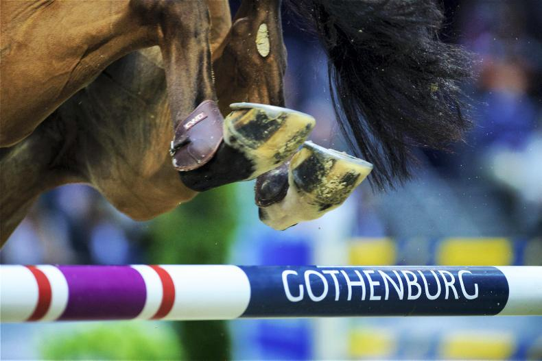IRISH HORSE WORLD FIXTURES, JUNE 22nd 2019