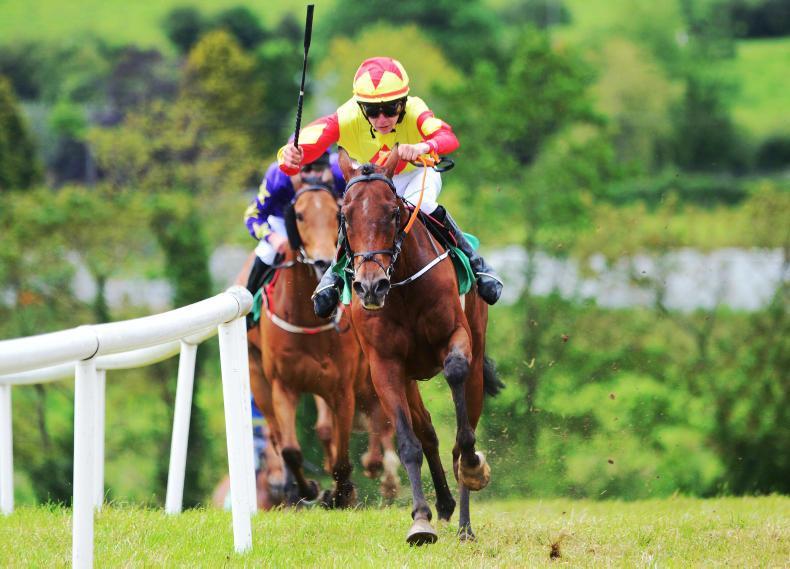 PONY RACING: Daniel the King of Castleisland