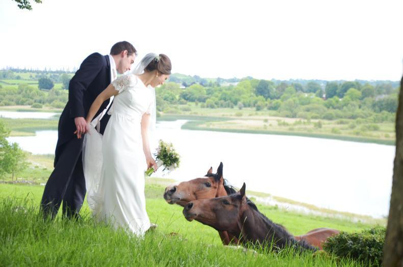 PONY TALES:  Wedding joy for Katie and Philip