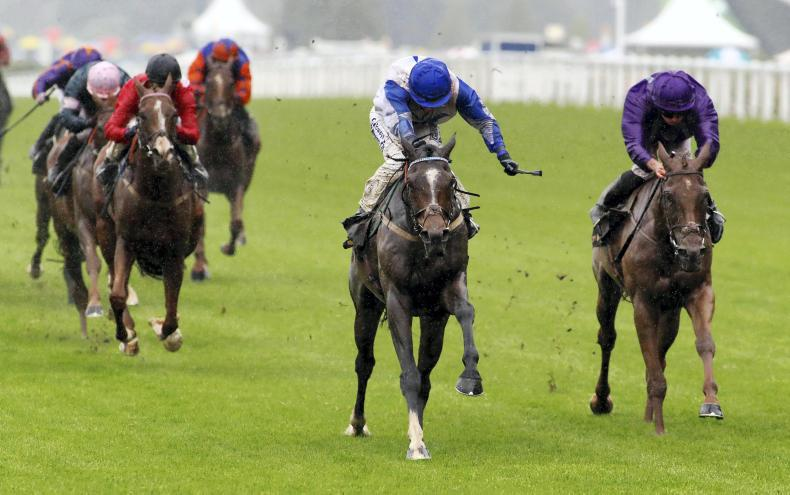 ROYAL ASCOT TUESDAY: In-form Williams scores Grand win in Ascot Stakes