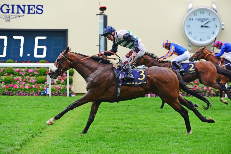 ROYAL ASCOT WEDNESDAY: Murphy delivers Willoughby win for old boss Balding