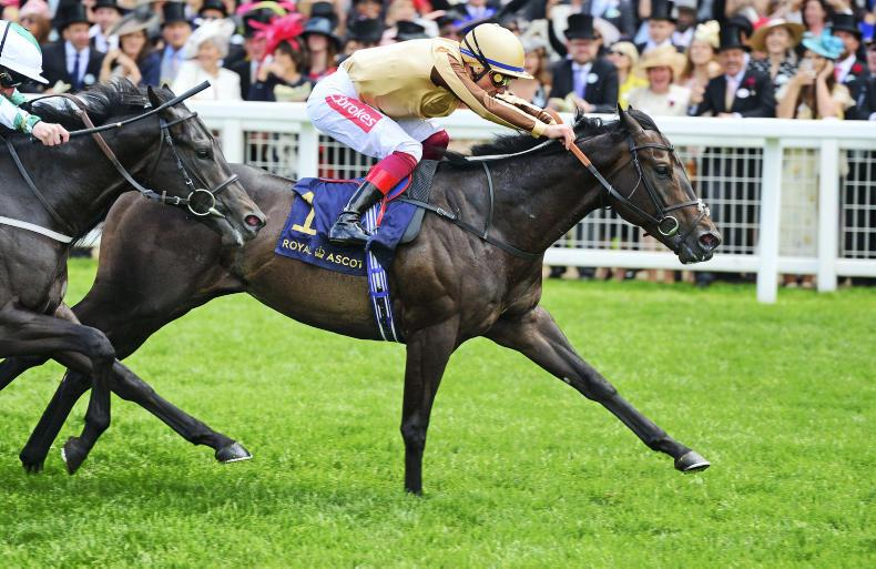 A'Ali impresses in Norfolk Stakes