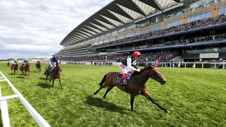 Dazzling Dettori delivers Ribblesdale glory with Star Catcher