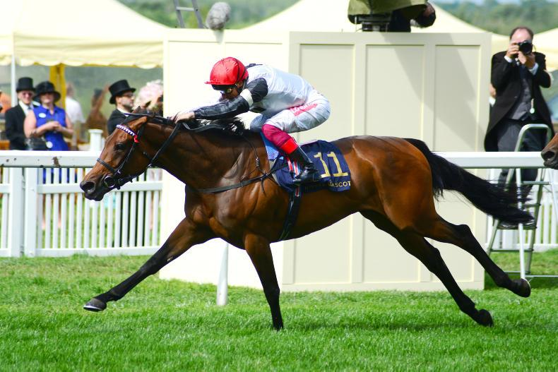 PEDIGREE ANALYSIS: Star Catcher gains another Royal Ascot win for her family