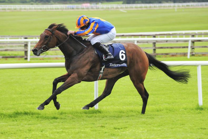 Royal Ascot day four – Hermosa returns as stamina is key elsewhere