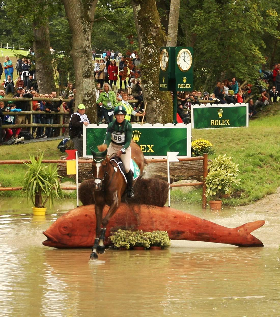 Rollercoaster year for international eventing