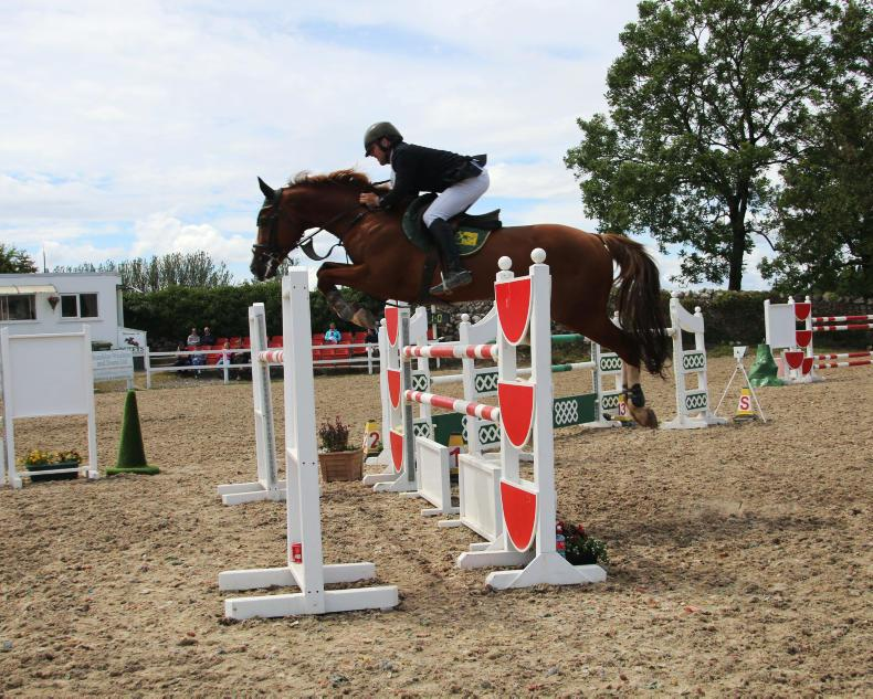 SHOW JUMPING: Oldtown KC makes winning return for O'Meara