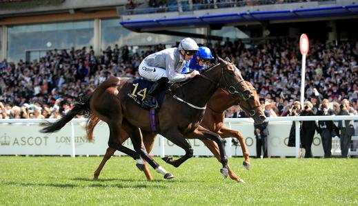 Space Traveller is out of this world for Tudhope and Fahey