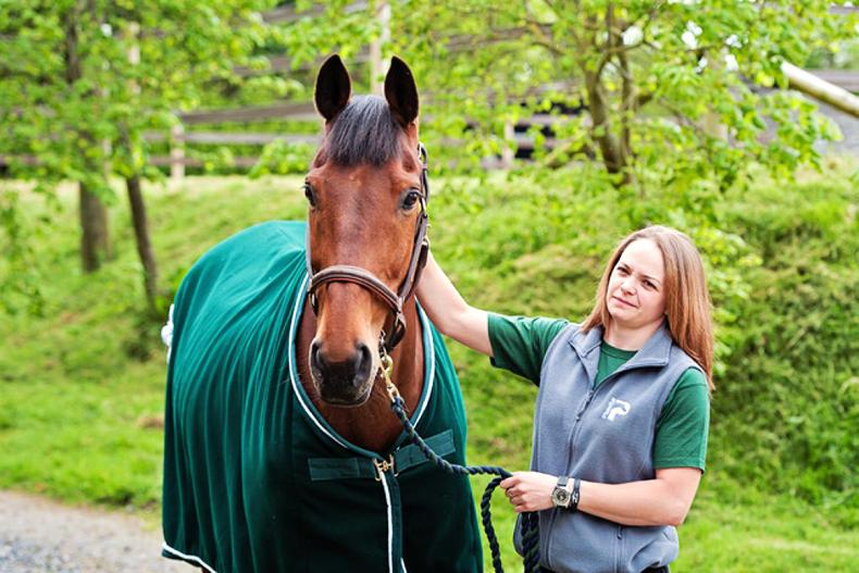 PONY TALES:   Hickstead boost for Vickie and Zack