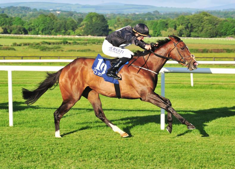 BREEDING INSIGHTS: Stonethorn's investment pays dividends