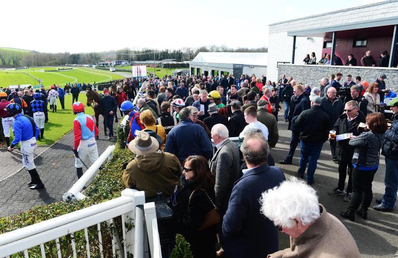 NEWS: Northern Ireland equine industry worth £212 million per annum