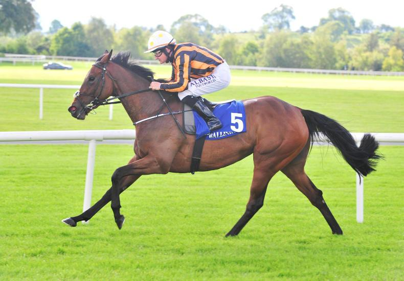 BALLINROBE MONDAY: Harrington's Xciting filly romps home