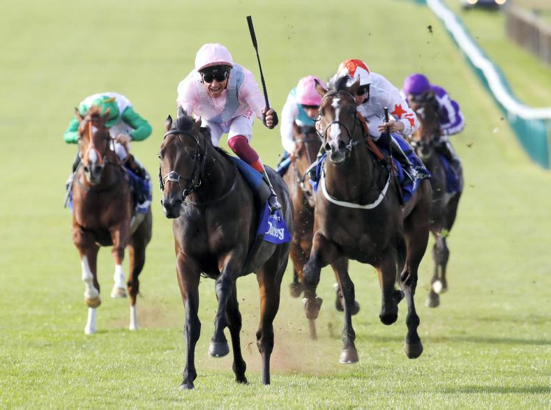 THE WEEK THAT WAS:  Royal Ascot review -  Too Darn soon to write off Hot?