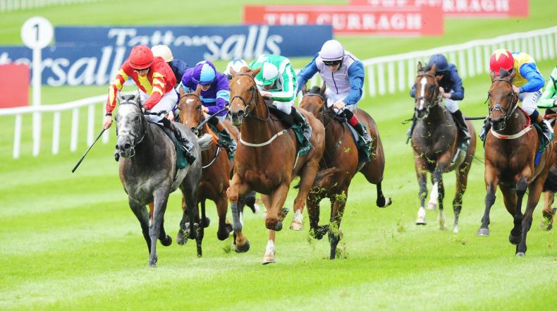 CURRAGH SATURDAY: Remarkable Byron shouldn't be discounted