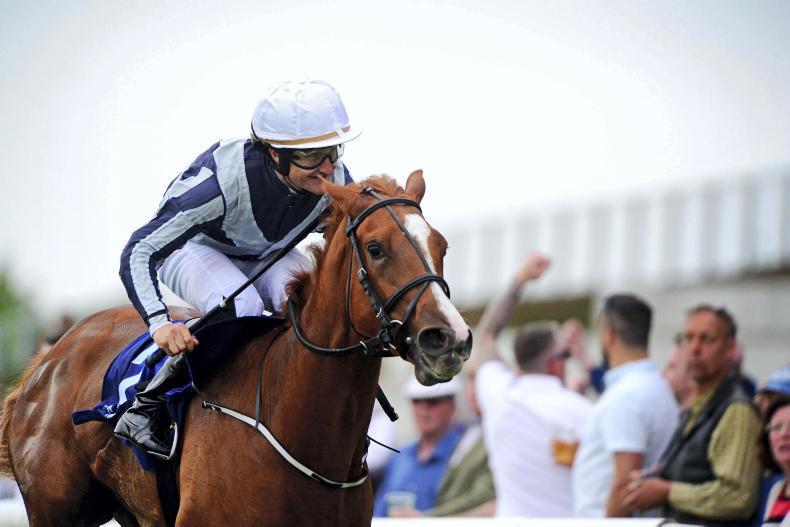 CURRAGH FRIDAY: Albigna another for Harrington
