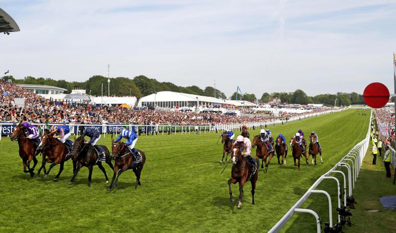 IRISH DERBY PREVIEW: Who will win the rematch at the Curragh?