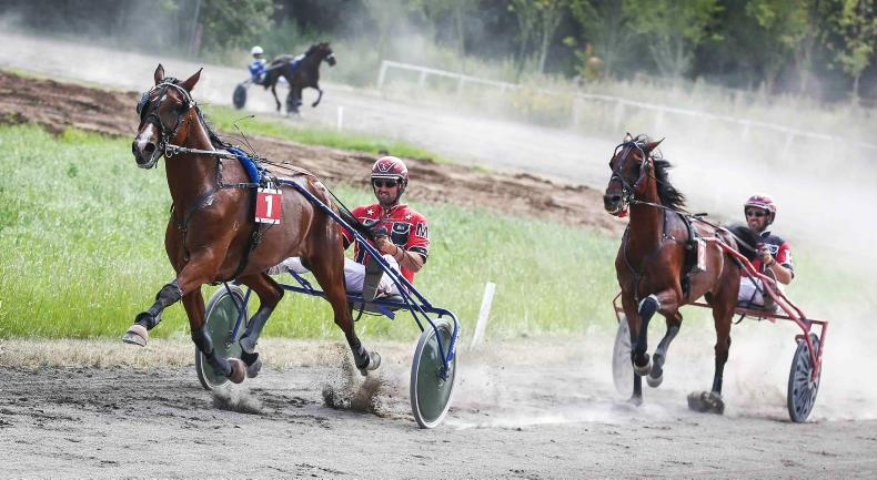 HARNESS RACING:  Kane doubles up at Annaghmore
