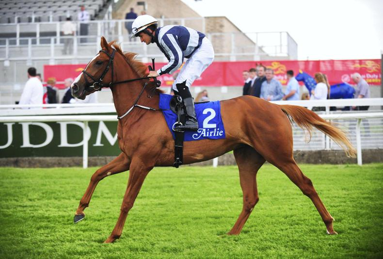 BREEDING INSIGHTS: Zoffany's star turn with Albigna