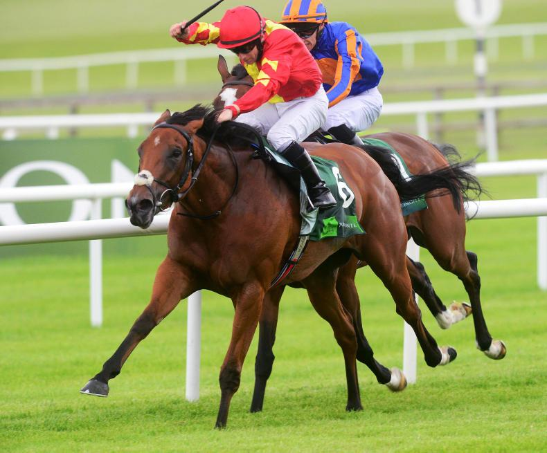 SIMON ROWLANDS: Iridessa steps-up in Pretty Polly