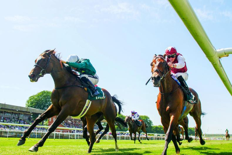 NEWMARKET SATURDAY: Limato star of the show