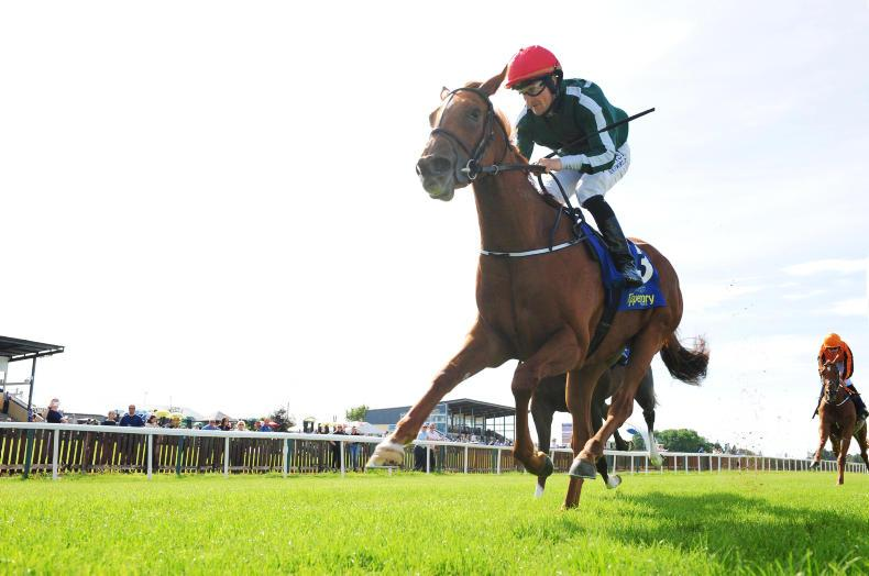 Red hot form for Harrington