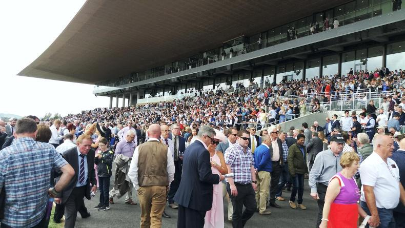 IRISH DERBY COMMENT: Paddy the Irishman needs a drink!