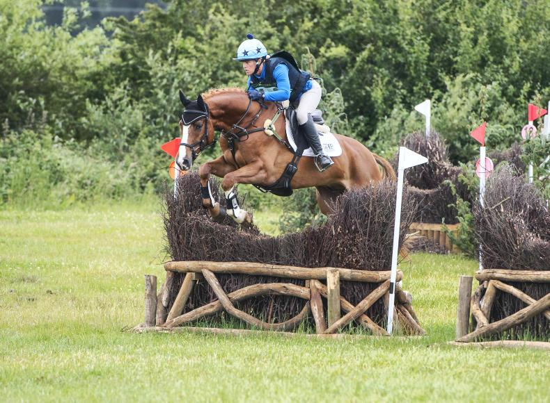 KILGUILKEY INTERNATIONAL: Young horses raising the bar