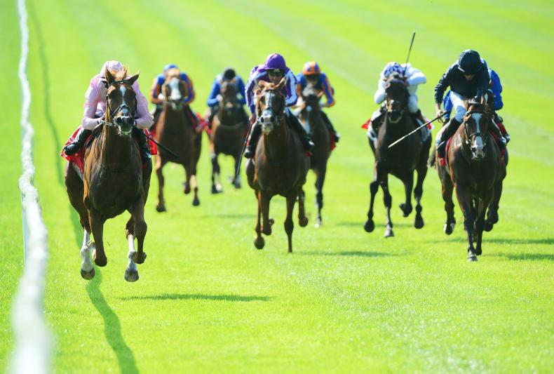 DONN McCLEAN: Don't discount the winner - Sovereign