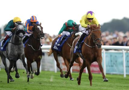 Sea Of Class has career ended by colic