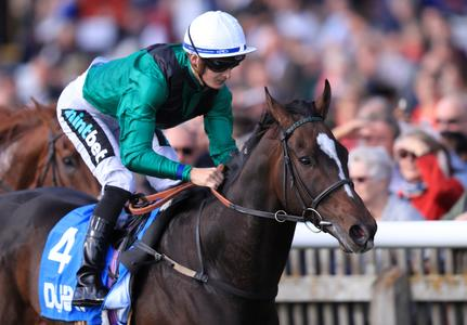 Limato's July Cup bid still to be confirmed