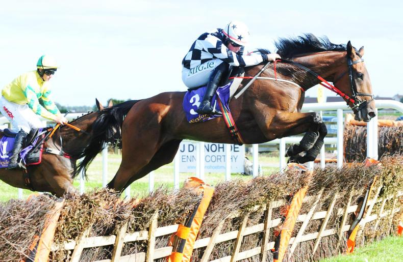 WEXFORD FRIDAY: Bright start for Lowtown Charlie