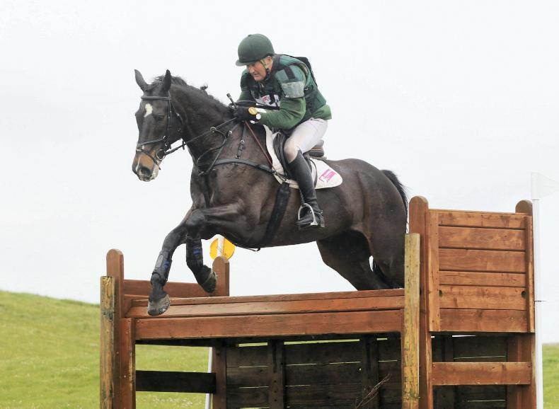 EVENTING:  Double win joy for Haugh