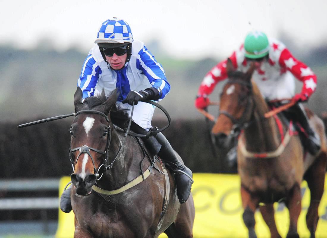 MAGILL BROS: Track winners should be welcomed into point-to-point opens