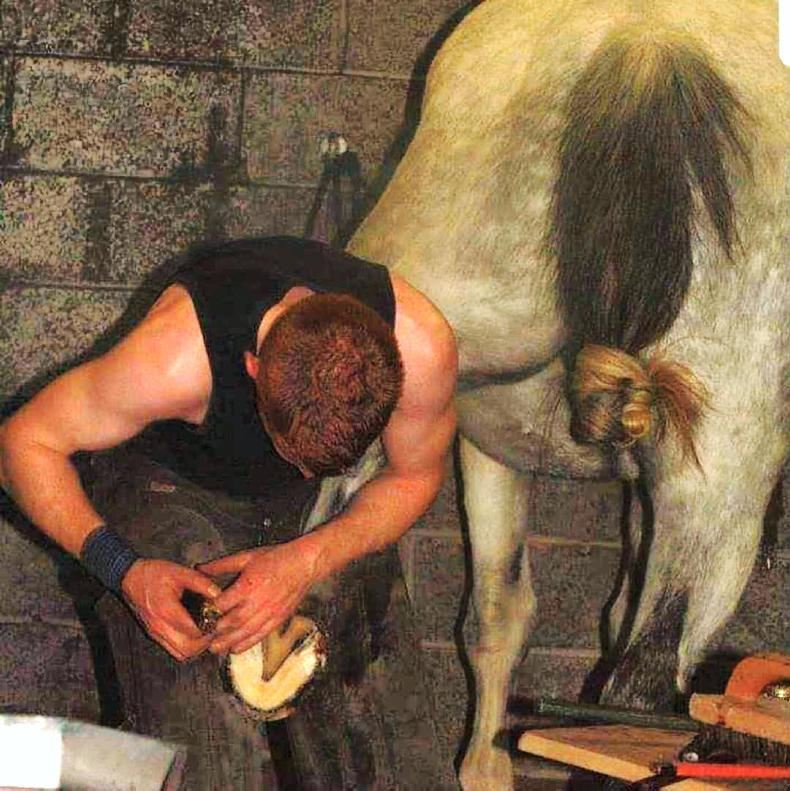 SALES PREPARATION FEATURE 2019: Sales prep from a farrier's perspective