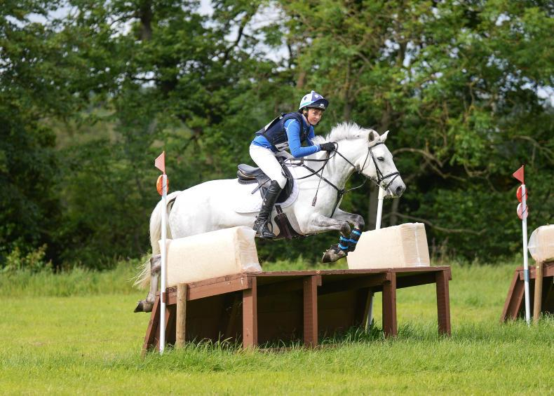 PONY CLUB: Gibbons lands strong Limerick qualifier