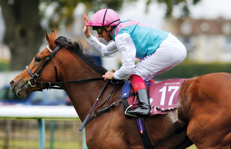 DONN McCLEAN: Welcome back Enable
