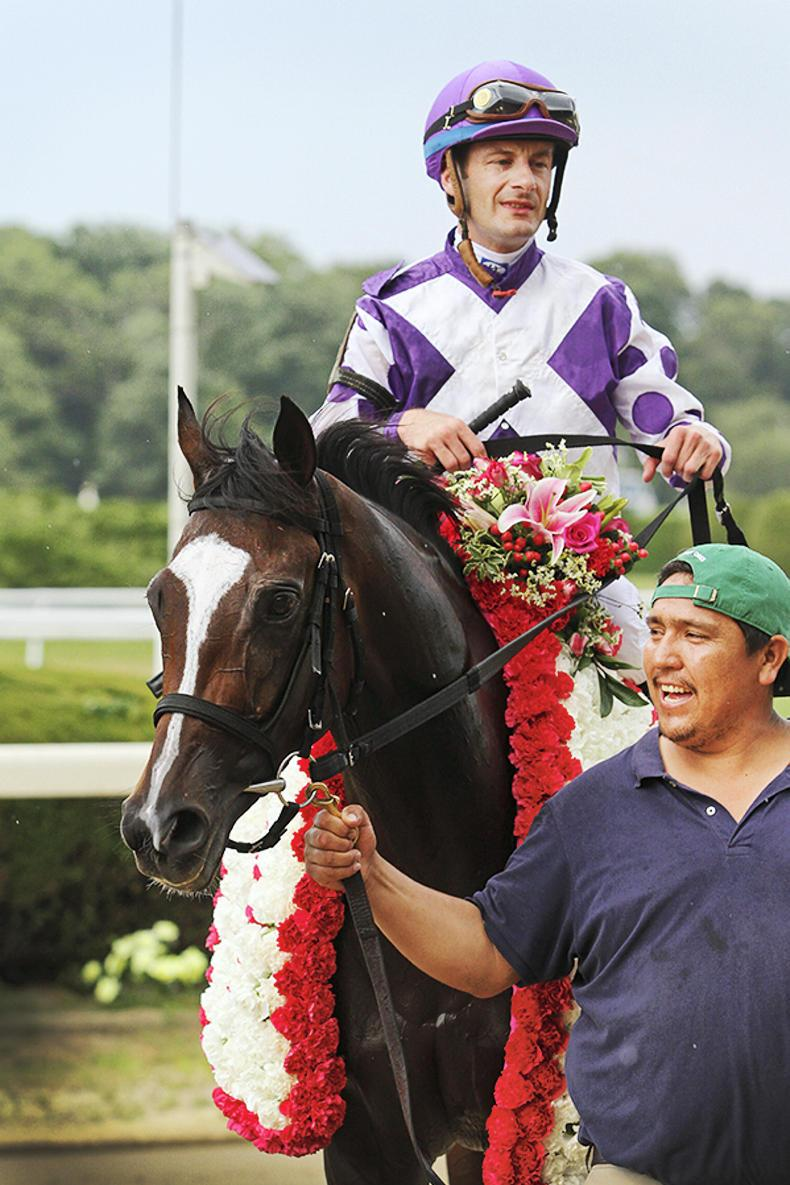 AMERICA: Concrete Rose cements top form