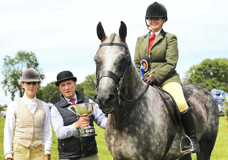 LONGFORD SHOW:  Sun, fun and champions