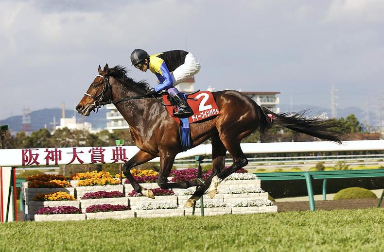 JAPAN: Drefong paying dividends