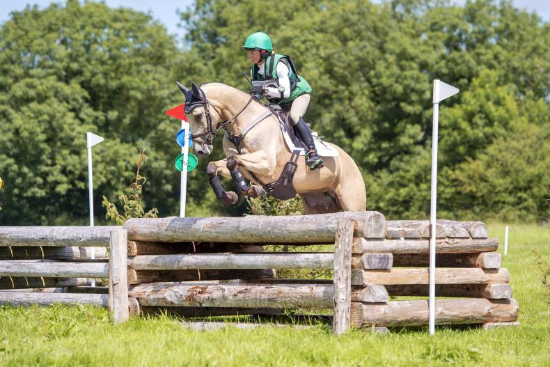 EVENTING:  Tullabeg Vision clinches win for Harrington