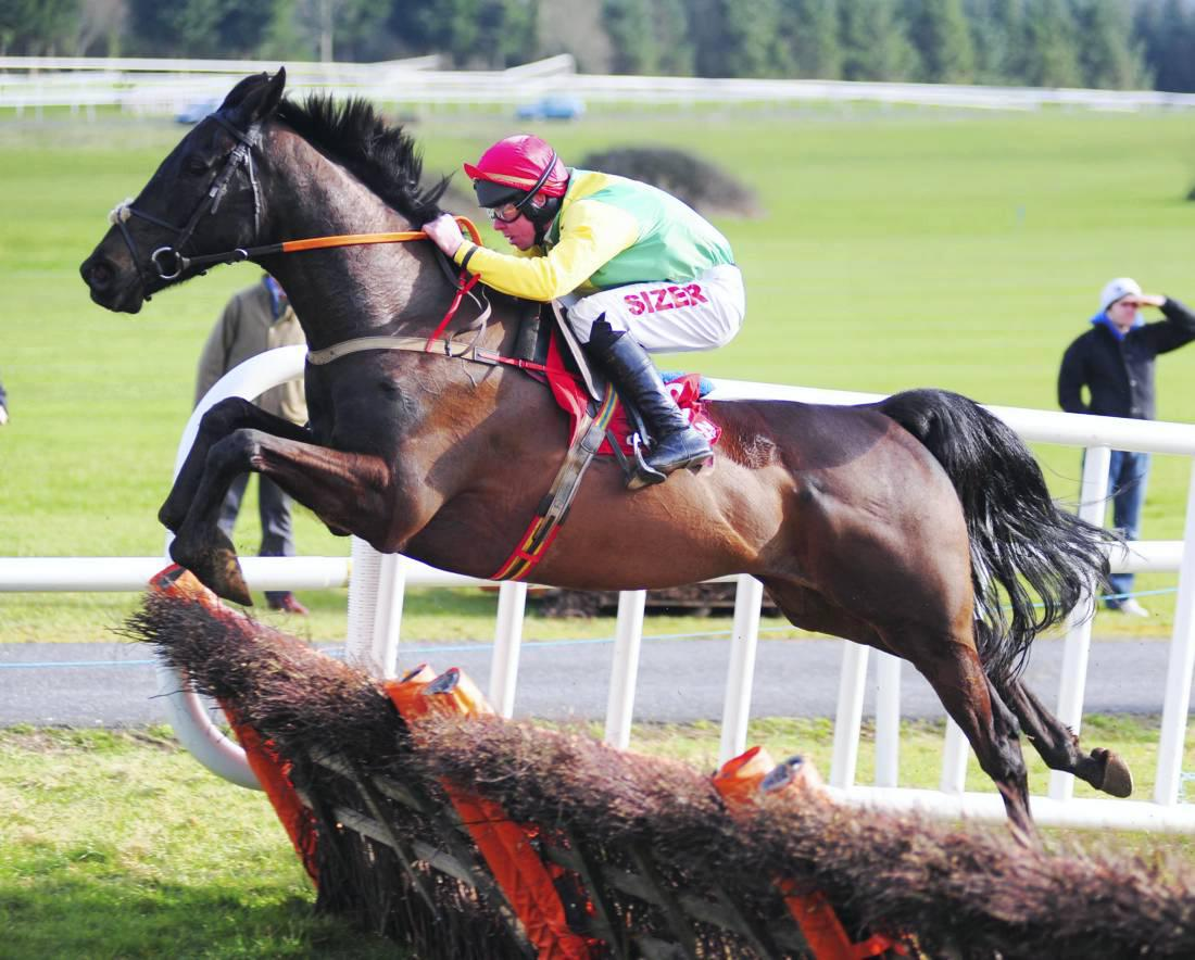 trainer henry hogarth runners today sports betting tips
