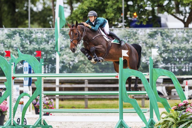 NEWS: Team bronze for Ireland's junior show jumpers