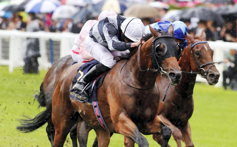 Sussex Stakes plan for Circus Maximus